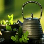 Moringa Tea Bag Lovers Bundle